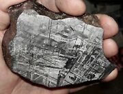 Beautiful Large 554 Gm Etched Gibeon Meteorite Thick Slice From Namibia