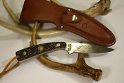 Vtg Rare Beautiful { Schrade -duck Unlimited-154uh } Knife And Sheath-usa