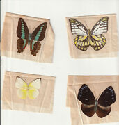 Butterflies - 10 Vintage Butterflies From Taiwan- Mounted On Tissue Paper