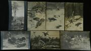 Fox Rabbits Dogs Russian Antique Foreign Black And White Postcard Lot Of 7