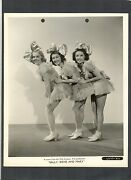 24 Photos In Exc To N Mint Cond - Alice Faye + Other Sexy Girls In Costumes 1937