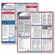 Complyright All Inclusive Federal And State Posters Arizona-spanish E50azs