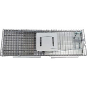 Collapsible Catch Release Heavy-duty Humane Cage Live Animal Trap Pack Of 5 New