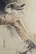 Hawk Hanging Scroll Japanese Painting From Japan Old Pine Vintage E659