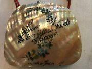 Souvenir Of Union Stock Yards, Chicago Vintage Abalone Shell Change Purse Rare