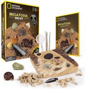 National Geographic Mega Fossil Dig Kit, Excavate 15 Real Fossils, Fast Shipping