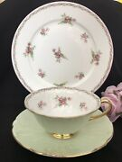 Shelley England Oleander Trio Bridal Rose Tea Cup Saucer And 8andrdquo Plate