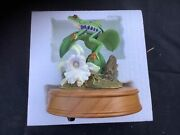 National Geographic Society Red-eyed Tree Frog The San Francisco Music Box