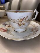 Beautiful Aynsley Orchids Tea Cup And Saucer England C. 1950 Rare