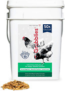 Grubblies Original Usa And Ca – Natural Grubs For Chickens - Chicken Feed Suppleme