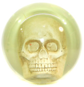 Undrilled 15 Pound Clear Bowling Ball With Human Skull Inside