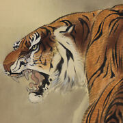 Japanese Painting Hanging Scroll Japan Tiger Old Picture 120q