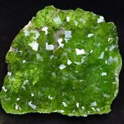 4160g Complete Deep Green Cubes Fluorite Crystal Cluster Mineral Specimen/china