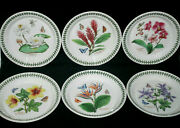 6 Portmeirion Exotic Botanic Garden Plates 8 Assorted Flowers Made In England