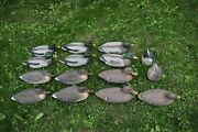 15 Mallard Duck Floating Water Decoys Flambeau And Carry Lite W/ Anchor Cords