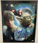 Frank Oz Mark Hamill Signed 16x20 Photo Star Wars Authnetic Autograph Becket E