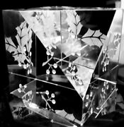 New In Box Steuben Glass Holly Crystal Engraved Paperweight Ornamental Xmas Star