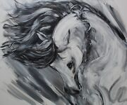 And039honourand039 Professional Canvas Limited Edition Spanish Horse Print By J. Hill