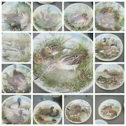 Southern Living Gallery 09359 Game Birds Of The South 13 Collectors Plates 1982