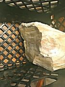 Opalized Petrified Wood - White And Amber, Some Bark Center Of Tree -16 Pounds