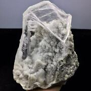 2300g Rare Calcite Flowers Cluster Based On The Transparent Gypsum Crystal/china