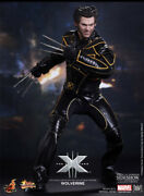 X-men The Last Stand Wolverine Sixth Scale Figure Mms187 Hot Toys Factory Se
