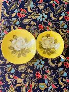 Paragon Large Cabbage White Roses Yellow Gold Double Warrant Teacup Saucer