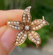 Victorian 14k Gold Diamond And Pearl Star Flower Brooch Antique Pin