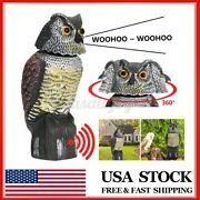 Owl Decoy Rotating Head And Sound Shadow Control Weed Pest Control Cro A