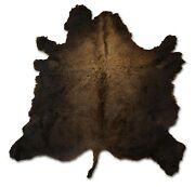 Xxl New American Buffalo Bison Hide Fur Rug - 7and039 X 9and039