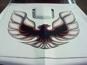 1973 - 1978 Trans Am Complete Decal Kit Red And Charcoal W/ One Piece Hood Bird
