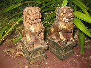 Chinese Gilded Iron Cast Pair Of Foo Dogs Ming/qing Dynasty