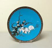 19th C. Japanese Cloisonne Enamel 12 Charger, Playful Puppies