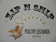 White Leg Bands One Size Fits All Poultry Chicken Duck Turkey Pheasant Goose