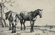 Paulus Potter Dutch 1625-1654 Etching The Plough Horse 3rd State
