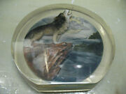 Howling Wolf Encased In Clear Lucite Stand 8and039and039 Vintage Original