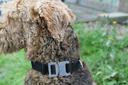 Onie Canine And039onieand039 25mm Austrialpin Cobra Fastner Dog Collar - Police Security