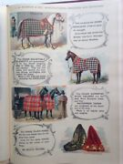 Mosemanand039s Illustrated Guide For Purchasers Of Horse Furnishing Goods 1893
