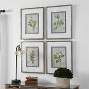 Botanical Study Framed Wall Art Prints S/4 French Country Farmhouse Leaf Floral