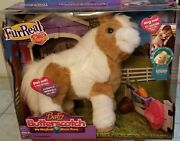 Furreal Friends Baby Butterscotch My Magical Show Pony New Hasbro 4+