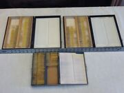 200+ Vintage Microscope Insect Slides Bees Yellow Jackets Wasps Honey Bees