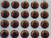1000 X 3d Holographic 14mm Real Fish Eyes For Fly Tying,lure,flies,pike,bass,c