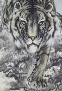 Japanese Painting Hanging Scroll Antique Asian Tiger Old Vintage Japan 466a