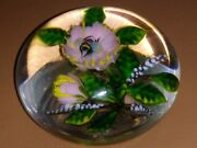 Rare Delmo Tarsitano Gorgeous Glass Paperweight Bee In A Flower