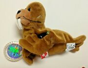 Coca-cola Walrus Bean Bag Beanie International Series Collectible Coke W/ Tag