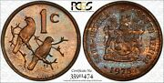 1975 South Africa 1 Cent Pr66rb Colorful Toned Coin Very Nice