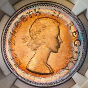 1960 South Africa 1 Penny Ngc Ms64rb Star Rainbow Toned Color Bu Gem Unc Dr