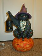 Rare Retired Jim Shore Heartwood Creek On The Night Watch Cat On Pumpkin Lighted