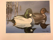 1988 Ohio Duck Stamp Print By Cynthie Fisher