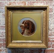 Alfred Richardson Barber - 1883 Portrait Of An English Springer - Oil Painting